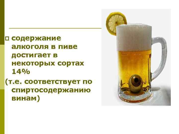 содержание алкоголя в пиве достигает в некоторых сортах 14% (т. е. соответствует по спиртосодержанию