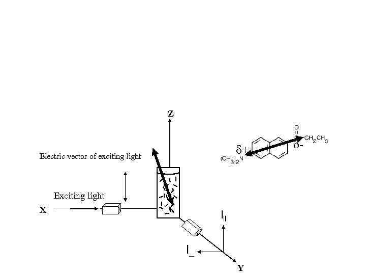 Z + Electric vector of exciting light Exciting light X O Y -