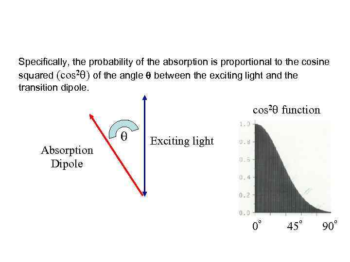 Specifically, the probability of the absorption is proportional to the cosine squared (cos 2