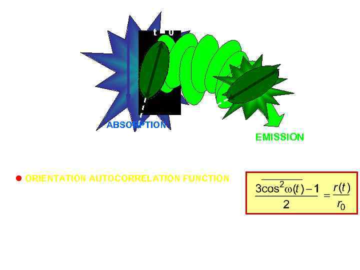 t=0 t ABSORPTION w ORIENTATION AUTOCORRELATION FUNCTION probability that a molecule having a certain