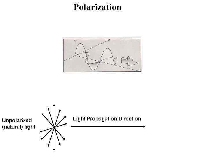 Polarization Unpolarized (natural) light Light Propagation Direction
