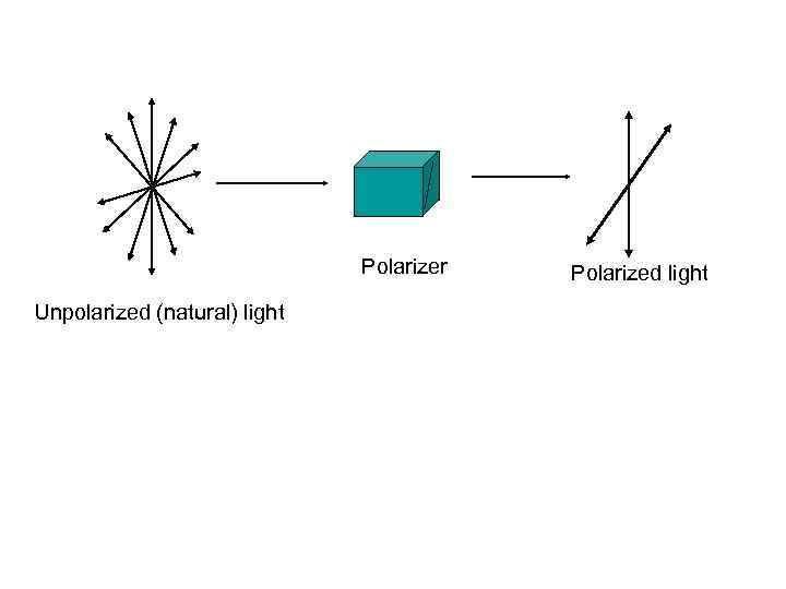 Polarizer Unpolarized (natural) light Polarized light