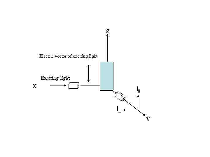 Z Electric vector of exciting light Exciting light X O Y