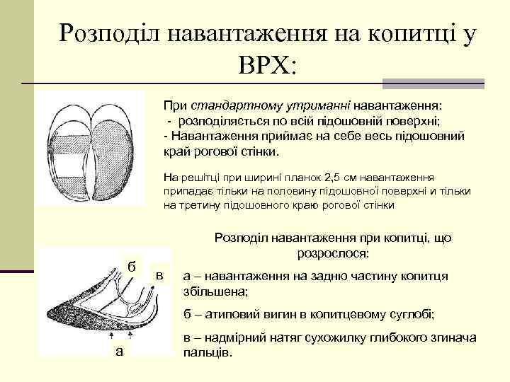 Розподіл навантаження на копитці у ВРХ: При стандартному утриманні навантаження: - розподіляється по всій