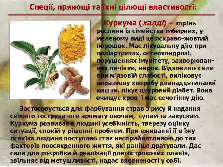 Спеції, прянощі та їхні цілющі властивості: Куркума (халді) – корінь рослини із сімейства імбирних,