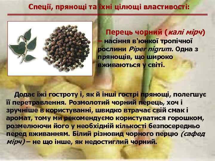Спеції, прянощі та їхні цілющі властивості: Перець чорний (калі мірч) – насіння в'юнкої тропічної