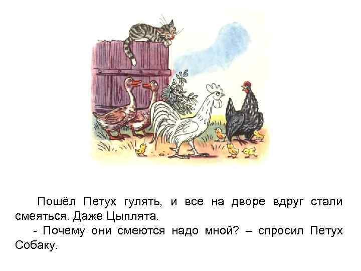 Пошёл Петух гулять, и все на дворе вдруг стали смеяться. Даже Цыплята. - Почему