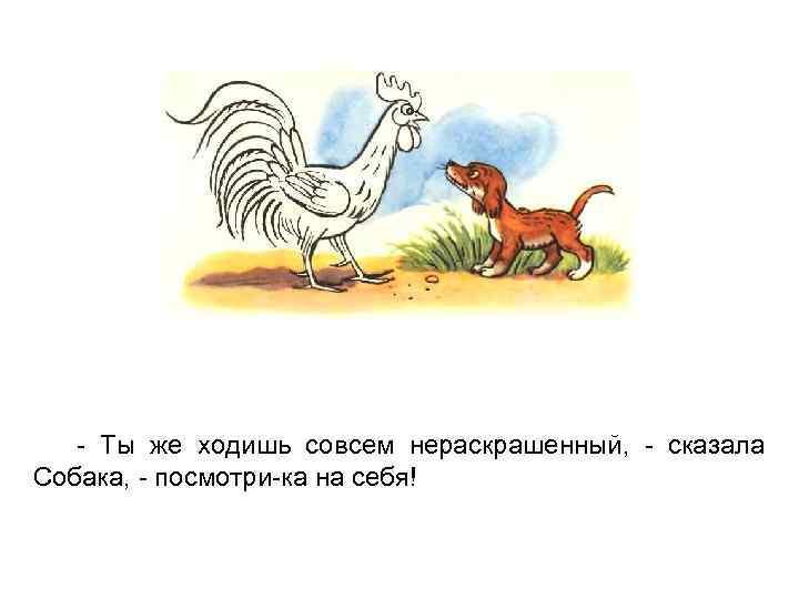 - Ты же ходишь совсем нераскрашенный, - сказала Собака, - посмотри-ка на себя!