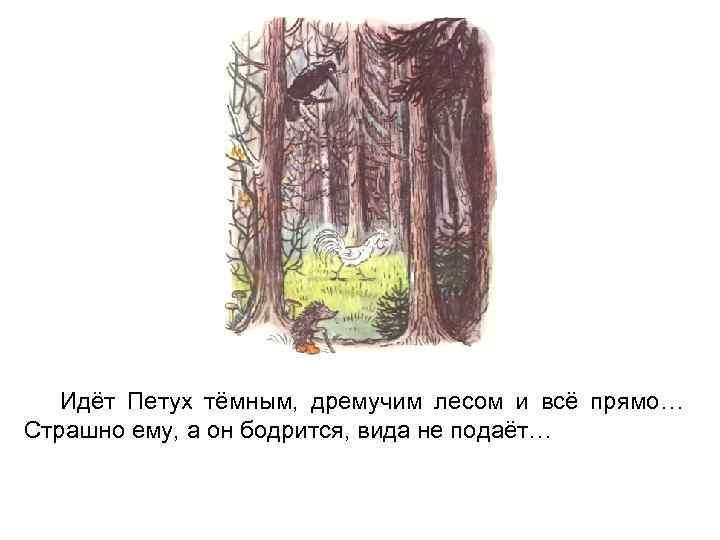 Идёт Петух тёмным, дремучим лесом и всё прямо… Страшно ему, а он бодрится, вида