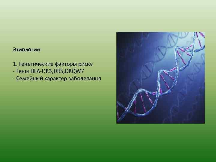 Этиология 1. Генетические факторы риска - Гены HLA-DR 3, DR 5, DRQW 7 -