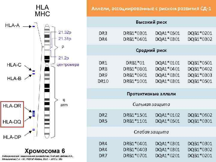 Аллели, ассоциированные с риском развития СД-1 Высокий риск DR 3 DR 4 DRB 1*0301