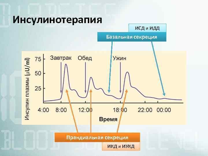 Инсулинотерапия ИСД и ИДД Базальная секреция Прандиальная секреция ИКД и ИУКД