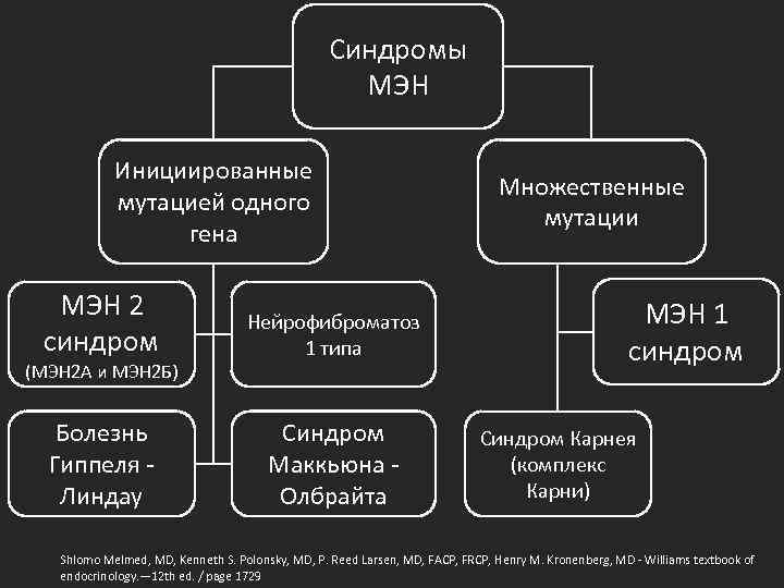 Синдромы МЭН Инициированные мутацией одного гена МЭН 2 синдром Нейрофиброматоз 1 типа Болезнь Гиппеля