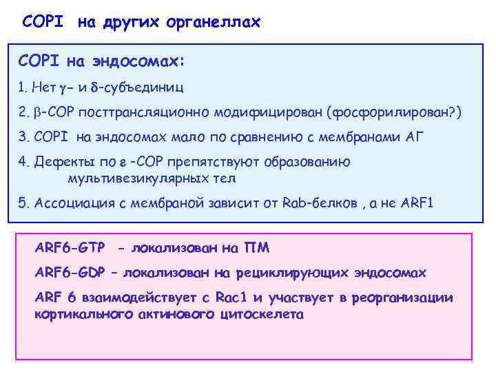 COPI на других органеллах COPI на эндосомах: 1. Нет - и -субъединиц 2. -COP