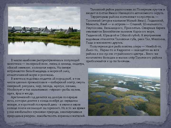 Тазовский район расположен за Полярным кругом и входит в состав Ямало-Ненецкого автономного округа. Территорию