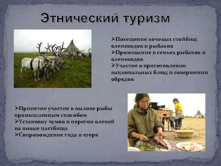 Этнический туризм ØПосещение кочевых стойбищ оленеводов и рыбаков ØПроживание в семьях рыбаков и оленеводов