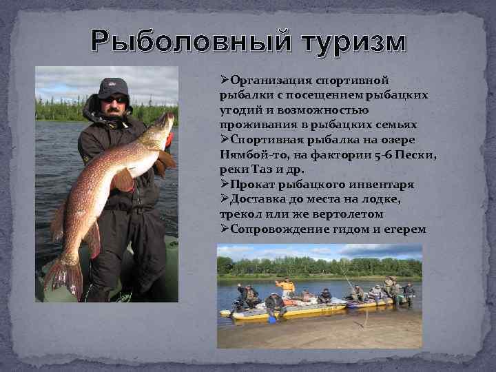 Рыболовный туризм ØОрганизация спортивной рыбалки с посещением рыбацких угодий и возможностью проживания в рыбацких