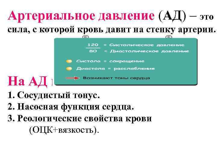 Артериальное давление (АД) – это сила, с которой кровь давит на стенку артерии. На