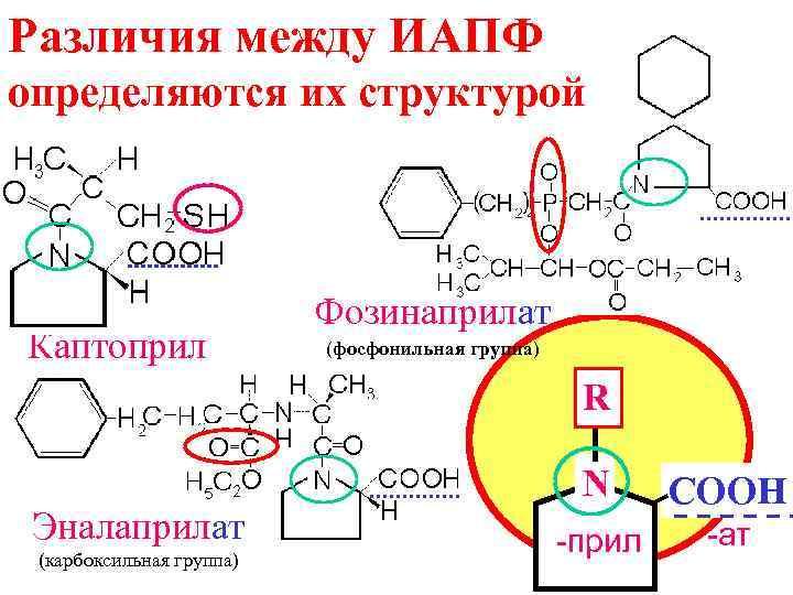 Различия между ИАПФ определяются их структурой Каптоприл Фозинаприлат (фосфонильная группа) R Эналаприлат (карбоксильная группа)