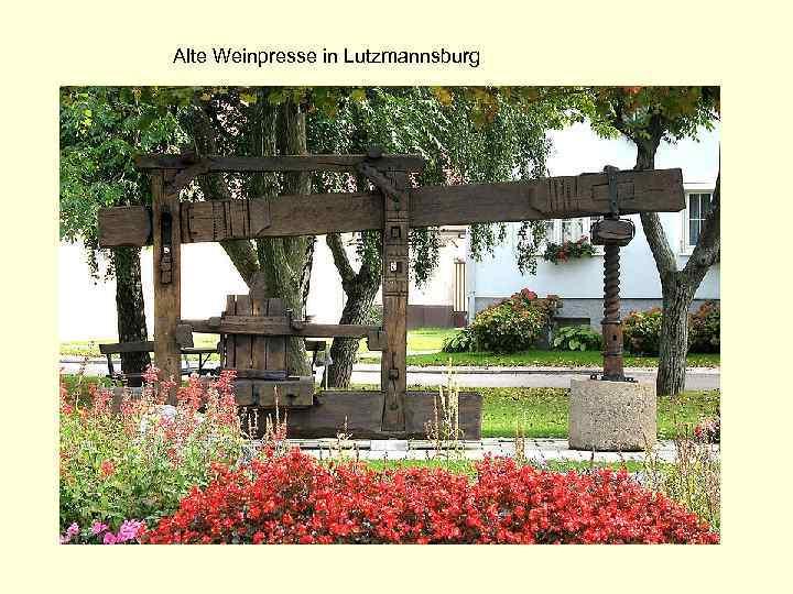 Alte Weinpresse in Lutzmannsburg
