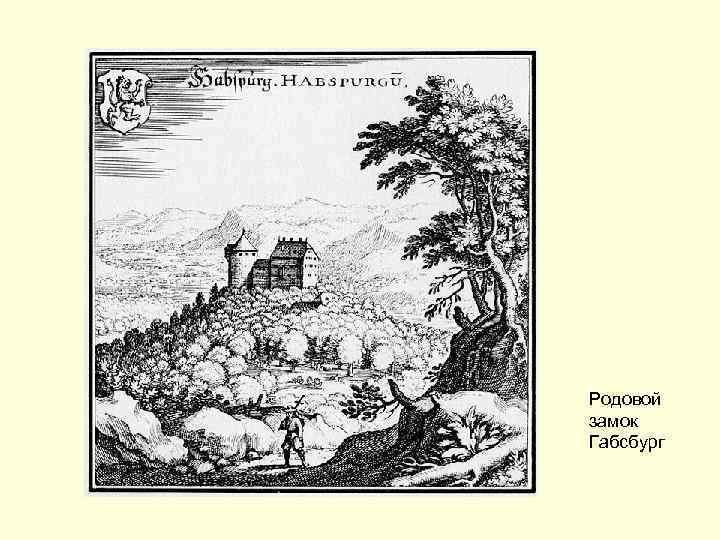 Родовой замок Габсбург