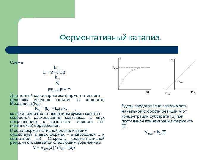 Ферментативный катализ. Схема k 1 E + S ES k 1 k 2 ES