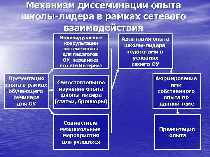 Механизм диссеминации опыта школы-лидера в рамках сетевого взаимодействия Индивидуальные консультации по теме опыта для