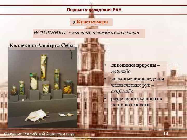 Первые учреждения РАН Кунсткамера ИСТОЧНИКИ: купленные в поездках коллекции Коллекция Альберта Себы • диковинки