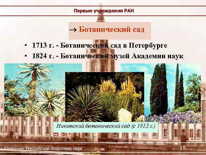 Первые учреждения РАН Ботанический сад • 1713 г. - Ботанический сад в Петербурге •