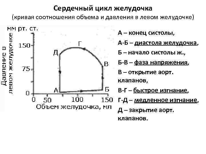 Сердечный цикл желудочка (кривая соотношения объема и давления в левом желудочке) А – конец