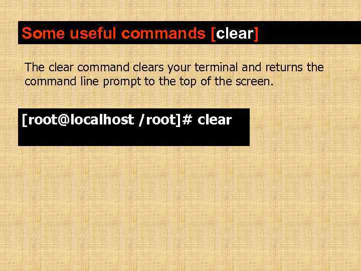 Some useful commands [clear] The clear command clears your terminal and returns the command