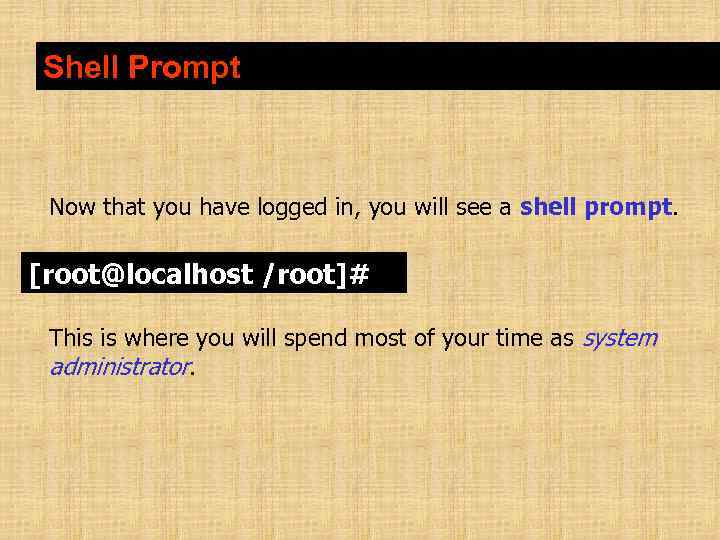 Shell Prompt Now that you have logged in, you will see a shell prompt.