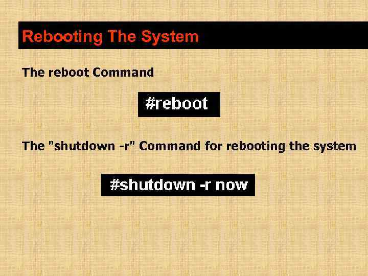 Rebooting The System The reboot Command The