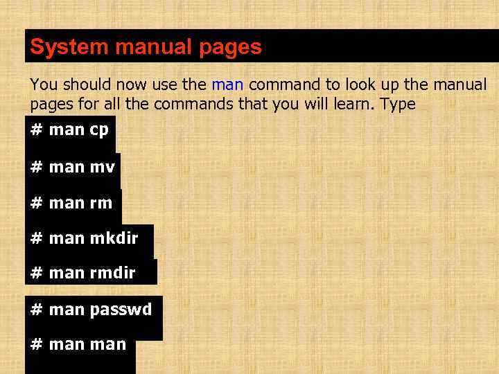 System manual pages You should now use the man command to look up the