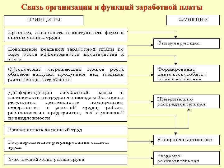 Связь организации и функций заработной платы