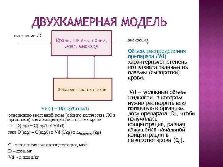 ДВУХКАМЕРНАЯ МОДЕЛЬ назначение ЛС Кровь, печень, почки, мозг, миокард Жировая, костная ткань, Vd (l)