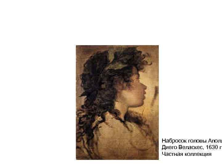 Набросок головы Аполл Диего Веласкес, 1630 г. Частная коллекция