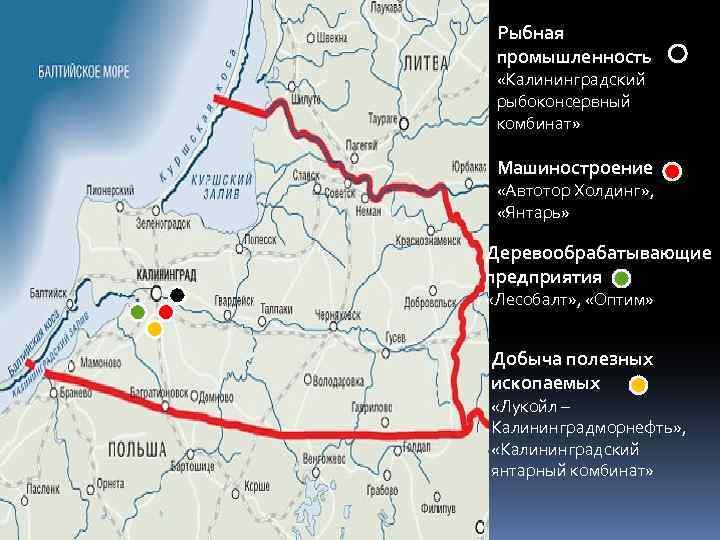 Рыбная промышленность «Калининградский рыбоконсервный комбинат» Машиностроение «Автотор Холдинг» , «Янтарь» Деревообрабатывающие предприятия «Лесобалт» ,