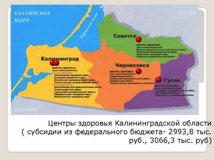 Центры здоровья Калининградской области ( субсидии из федерального бюджета- 2993, 8 тыс. руб. ,