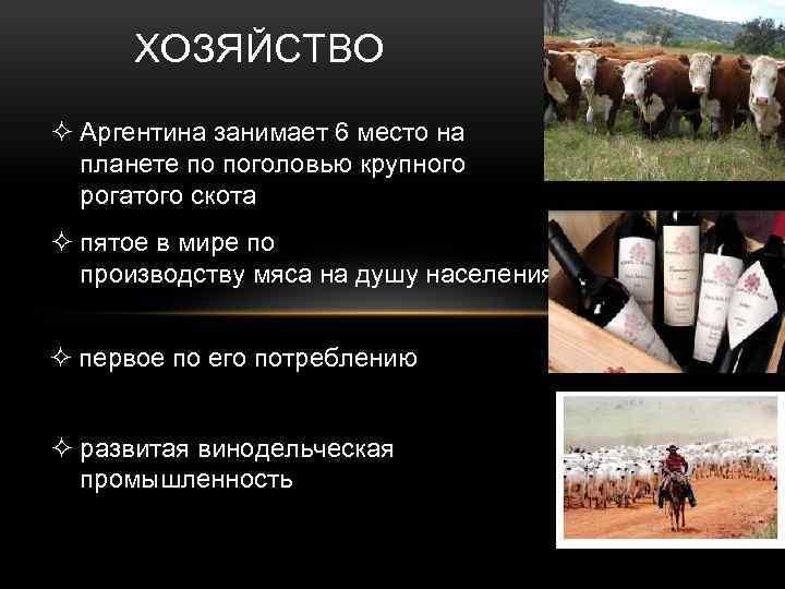 ХОЗЯЙСТВО ² Аргентина занимает 6 место на планете по поголовью крупного рогатого скота ²