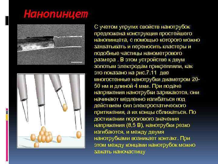 Нанопинцет С учетом упругих свойств нанотрубок предложена конструкция простейшего нанопинцета, с помощью которого можно