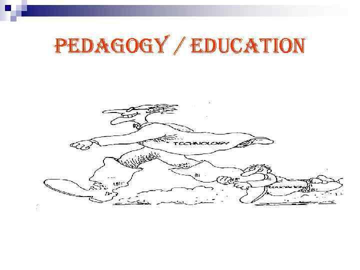 pedagogy / education