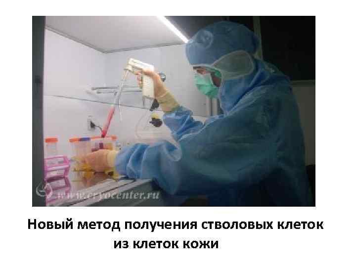 Новый метод получения стволовых клеток из клеток кожи