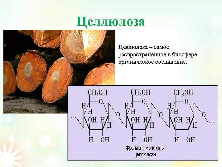 Целлюлоза – самое распространенное в биосфере органическое соединение.