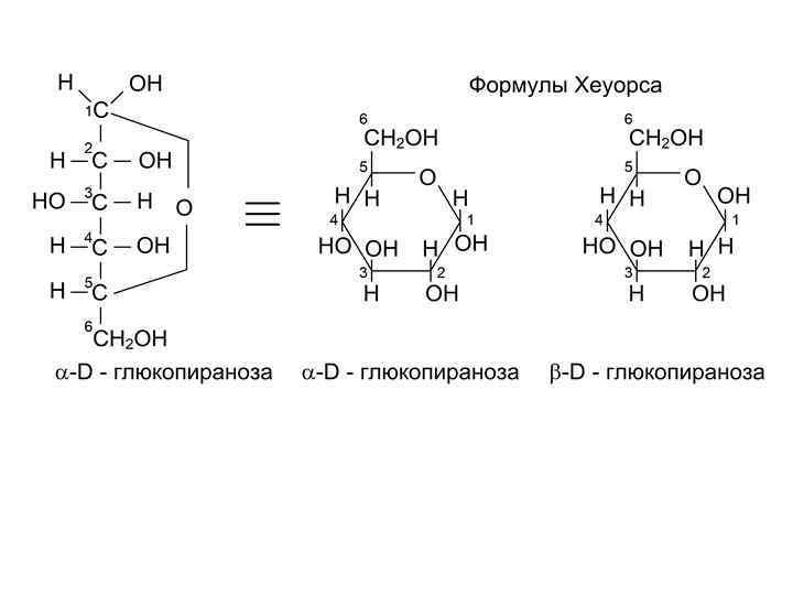 жизни случаются распространение моносахаридов в природе фотосинтез для вязания