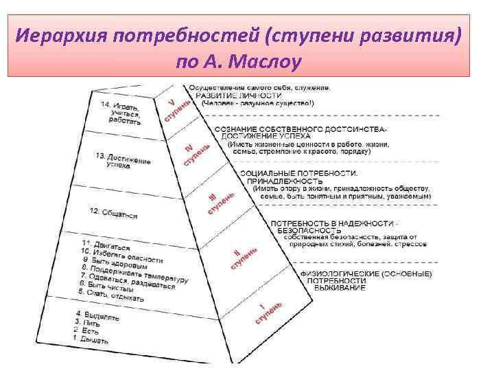 Иерархия потребностей (ступени развития) по А. Маслоу