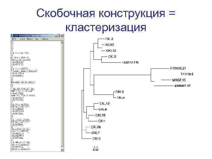 Скобочная конструкция = кластеризация