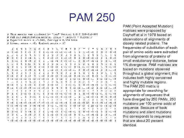 PAM 250 PAM (Point Accepted Mutation) matrices were proposed by Dayhoff et al in