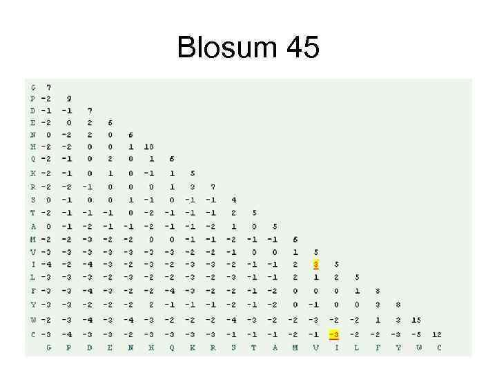 Blosum 45