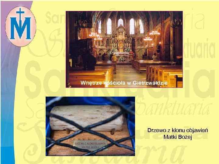 Wnętrze kościoła w Gietrzwałdzie Drzewo z klonu objawień Matki Bożej